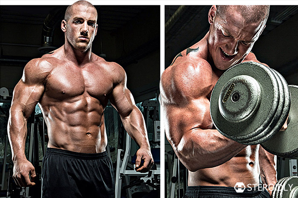 Know The Benefits Of Legal Steroids